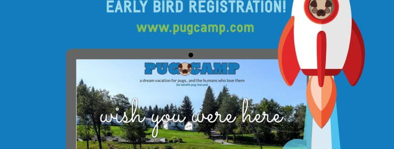 Pug Camp Launch