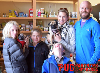 Featured Rescue Pug Partners of Nebraska
