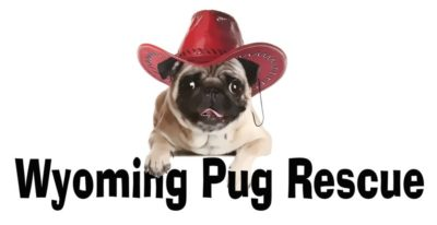 Wyoming Pug Rescue