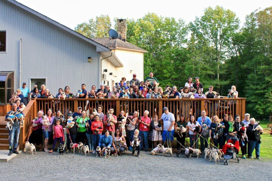 Pug Camp Group Photo