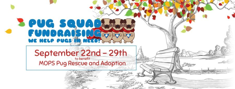 MOPS Pug Rescue & Adoption Auction