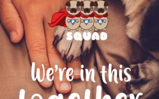 Pug Squad COVID19