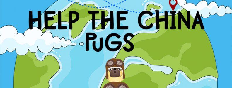 Help The China Pugs!